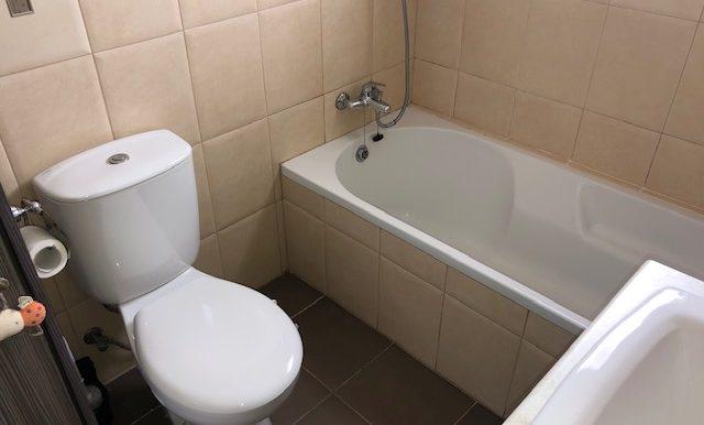 Fmaily bathroom